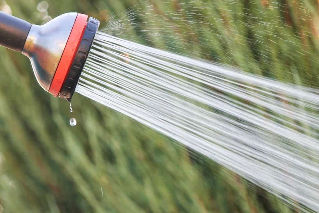 Water coming out of a spray hose